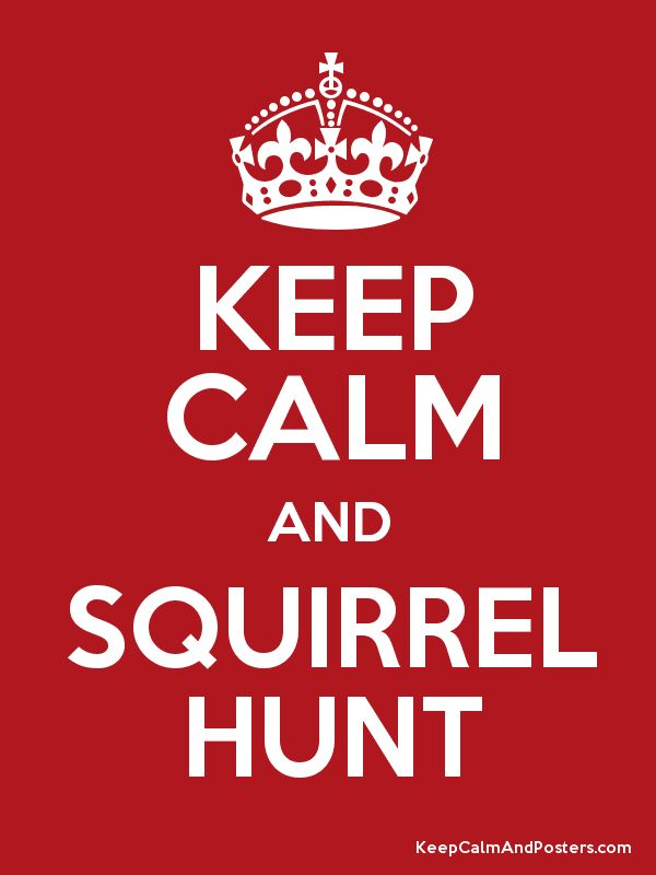 Keep Calm and SQUIRREL HUNT Poster