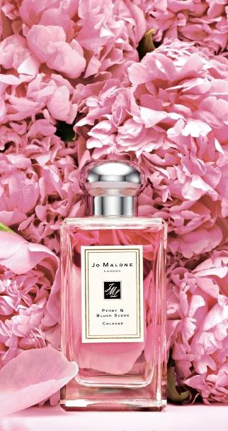 Lush pink peonies and a Jo Malone fragrance | House of Beccaria#