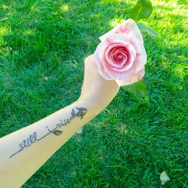 25 Best Ideas About Still I Rise Tattoo On Pinterest: 9 Best Tattoo Ideas Images On Pinterest