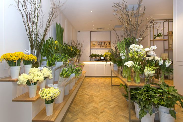 daisy 39 s florist interior fit out love a good flower