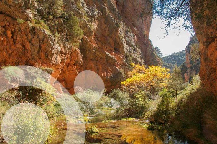 Fall in a hidden gorge