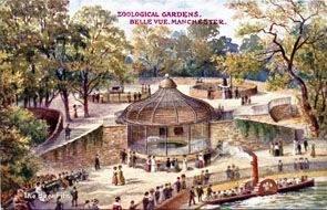 Bear Pit - Belle Vue Zoological Gardens postcards
