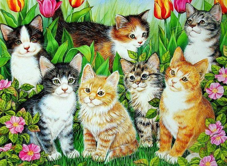 чем картинки где нарисованы коты подключив совсем