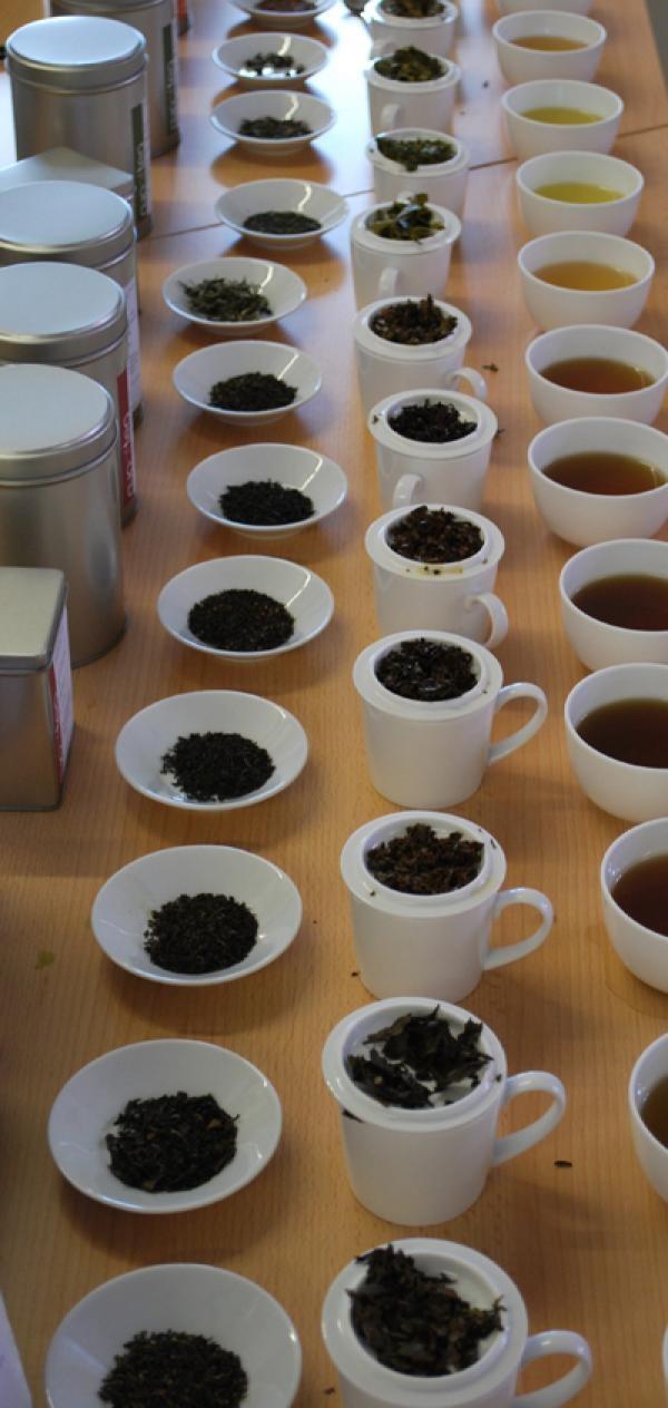 Tea Tasting Workshops would love to go