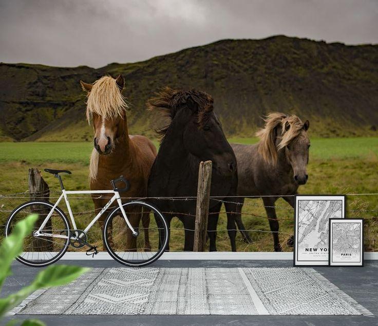 hästar 3 Tapet