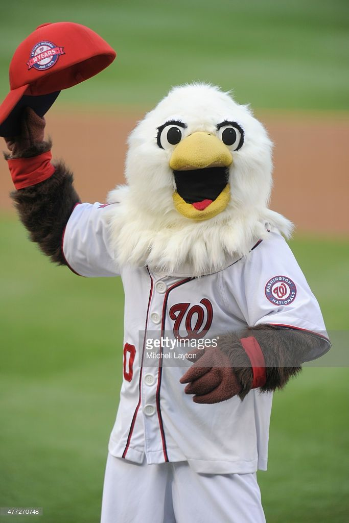 The Washington Nationals mascot Screech looks on during a baseball game against the Chicago Cubs at Nationals Park on June 5, 2015 in Washington, DC. The Nationals won 7-5.