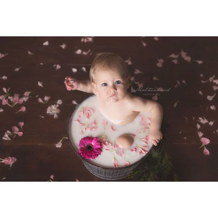 "10 Likes, 1 Comments - Motherhood Photography (@motherhoodphotography) on Instagram: ""Claire was in the studio and enjoyed a milk bath for her one year session this week!  Happy…"""