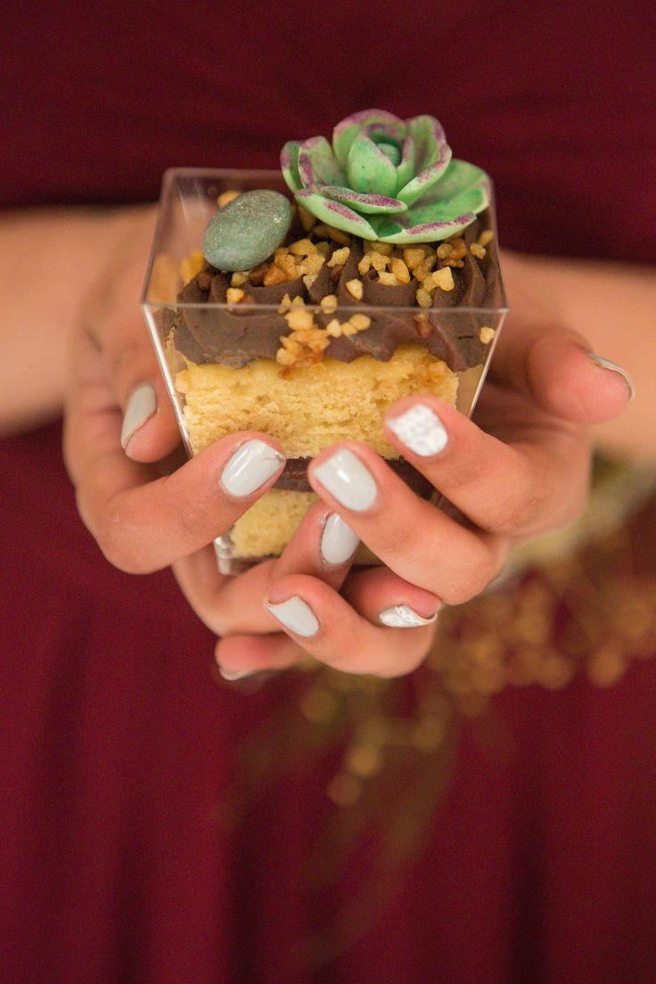 Edible garden. Vanilla sponge with peppermint chocolate ganache, edible stones & succulent