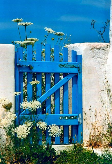 Blue wooden gate and wild flowers, Antiparos Island, Cyclades, Greece
