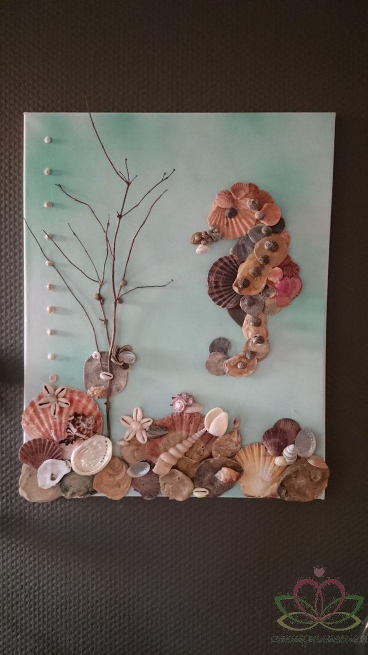 Schelpenschilderij Zeeeleven Zeepaardje. Wil je dit zelf maken? Meld je aan voor de nieuwsbrief op onze website http://www.goedkoop-bloemschikken.nl/194080-schelpen-en-zeesterren-