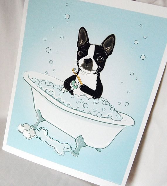 25 Best French Bulldog Cartoon Images On Pinterest Animals French Bulldog And Drawings