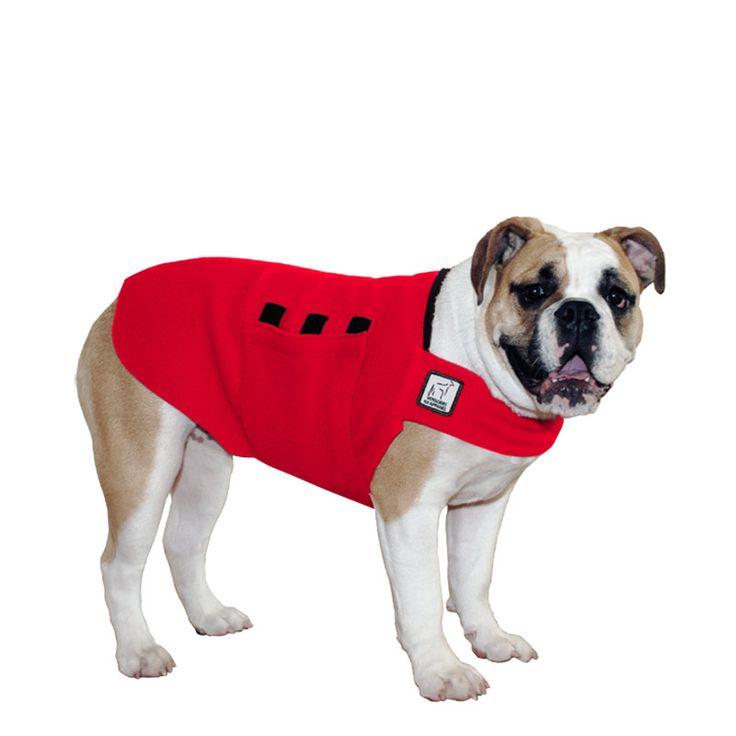 Red English Bulldog Dog Tummy Warmer, great for warmth, anxiety and laying with our dog rain coat. High performance material. Made in the USA.