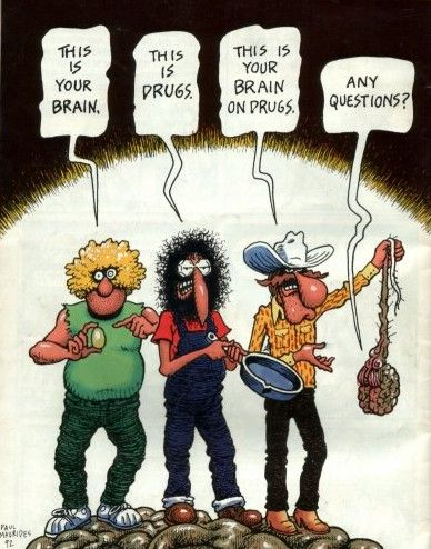 TheFabulous Furry Freak Brothers are a trio ofunderground comic strip characters created by theU.S. artistGilbert Shelton. Their first comic book appearance was inFeds 'n' Heads, p…