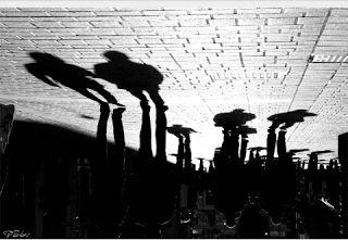 REFLEJOS JUEGOS DE ESPEJOS: Poesía: Diálogos con la sombra
