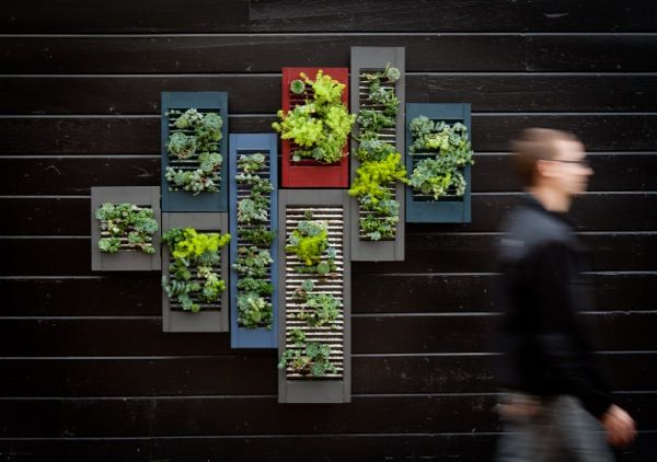 recycled shutters as vertical planters