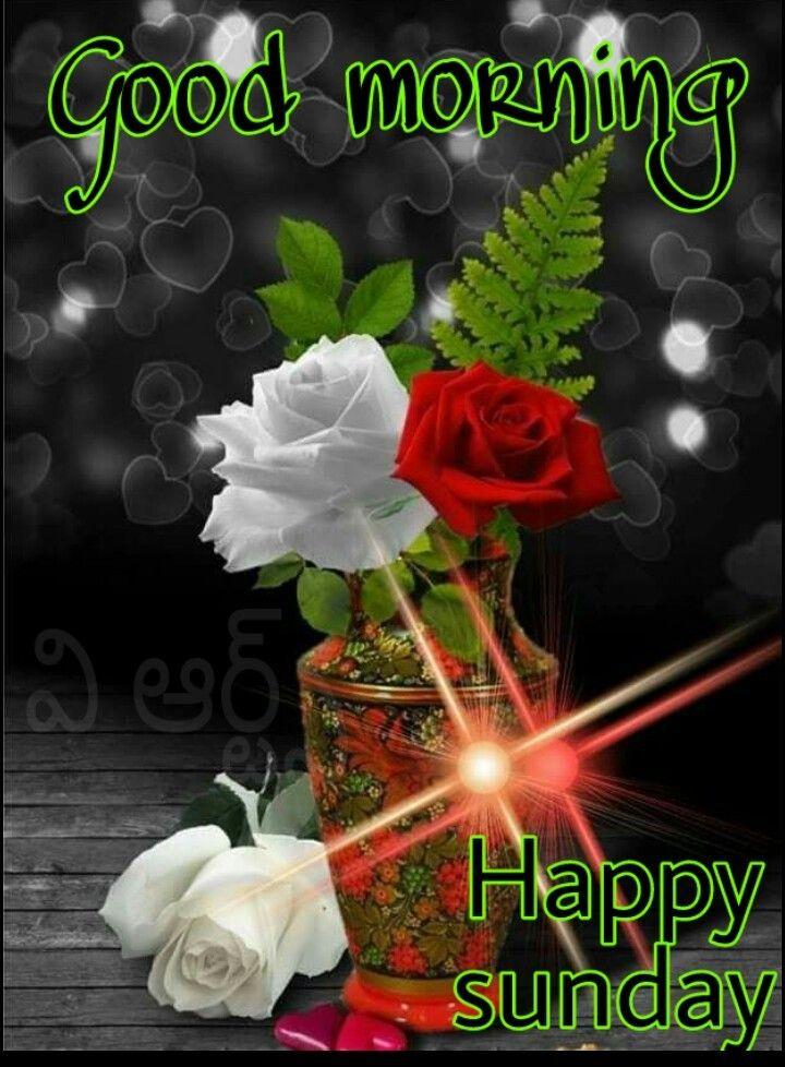 Pin By Monoranjansardar On Morning Good Morning Sunday Greetings