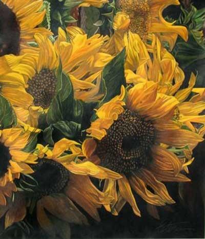 sunflowers: Ian Sunflowers, Art Sunflowers, Favorite Flowers, F2 Sunflowers, Sunflowersmi Favorite, Flowers Sunflowers, Sunny Sunflowers, Sunflowers Mi Favorite, Beautiful Flowers