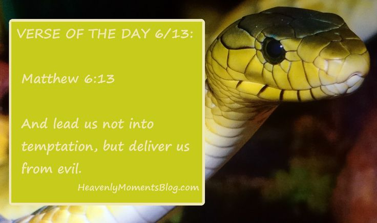 VERSE OF THE DAY 6/13:  Matthew 6:13  And lead us not into temptation, but deliver us from evil.  #Bible #verse #Bibleverse #quote #BibleQuote #Christian #Christianity #ChristianQuote #Christ #Jesus #JesusChrist #God #Lord #evil #serpent #devil #satan #deliver #Matthew #verseoftheday #Christianwoman #Christianmom #Christianwife #temptation #scripture