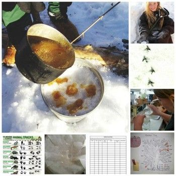 Weather trees to maple syrup candy: Science and nature fun for January (free printables and activities for animal tracking, making maple syrup toffee, weather trees, citizen science, snow experiments, more)