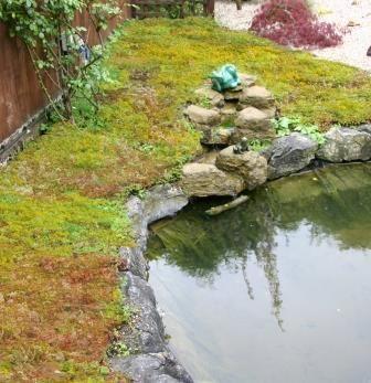 excellent best ponds images on pinterest pond ideas garden ideas and backyard ponds with garden pond edging ideas