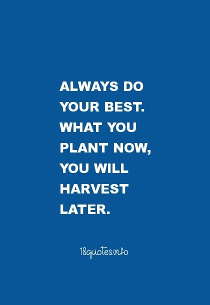 26 Motivational Quotes : Always do your best. What you plant now, you will harvest later.
