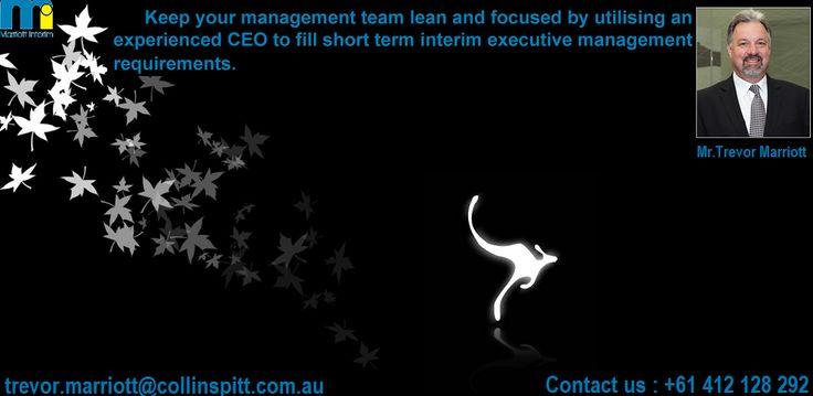 Interim Management Executive