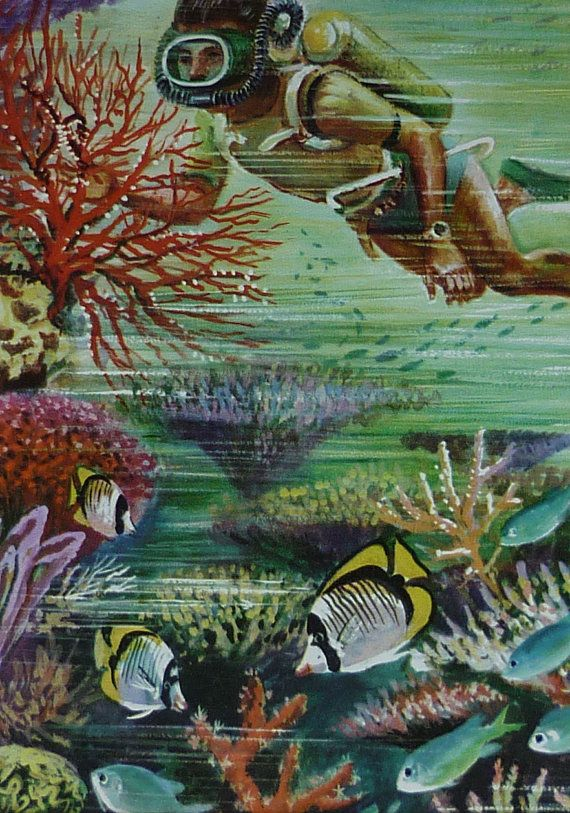 Vintage 1960s Scuba Diver Print - Natural History ...