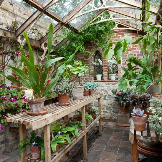Classic Garden Greenhouse - A Victorian greenhouse with a striking wood-and-metal framed roof houses several cacti species, including a night-scented variety, Selenicereus grandiflorus.
