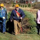Choose and chop down your own Christmas tree at these Northeast Ohio tree farms.