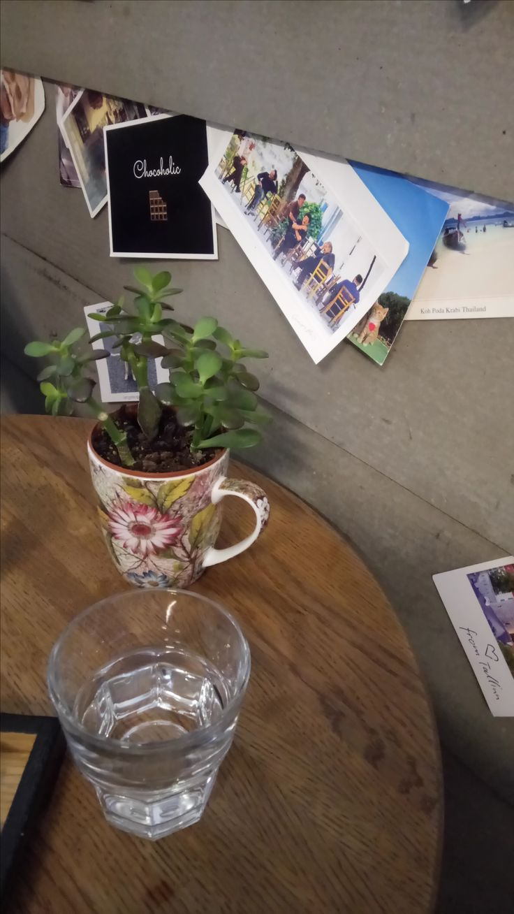 V melounovém cukru #coffee #coffeelove #iced #macchiato #positive #sunny #coffees #coffeemug #bestshot #earth #pure #freedom #czechrepublic #beautiful #bar #coffeelover #coffeeview #coffeehouse #espresso #cafe #kaffee #kaffeepause #kaffeeliebe #kaffeezeit #kaffeehaus #café