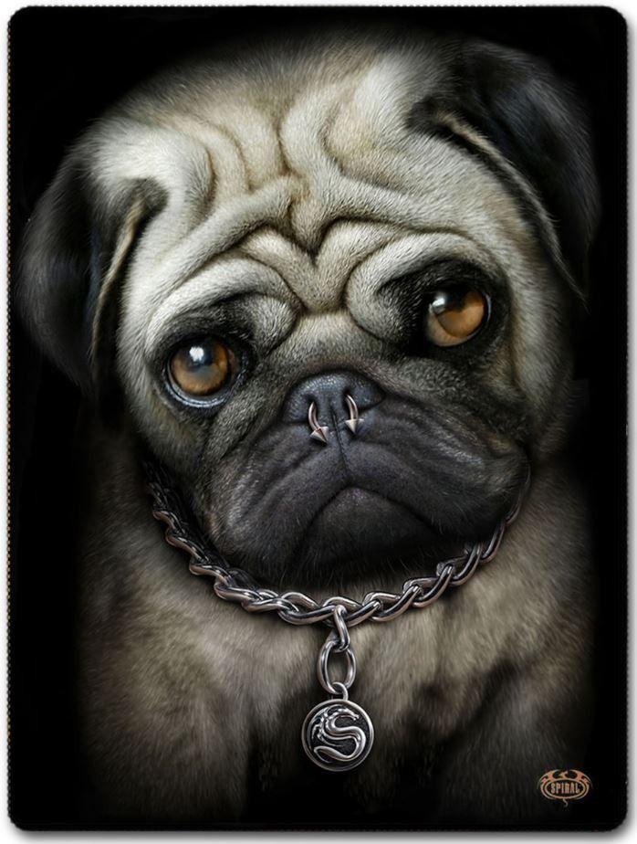 Pug Life Blanket
