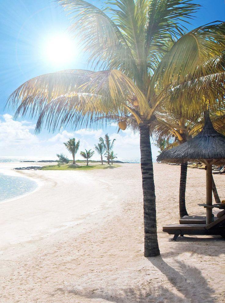 L'île Maurice. Plage de rêve