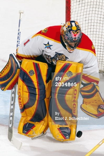 Goaltender Roberto Luongo in Florida Panthers gear