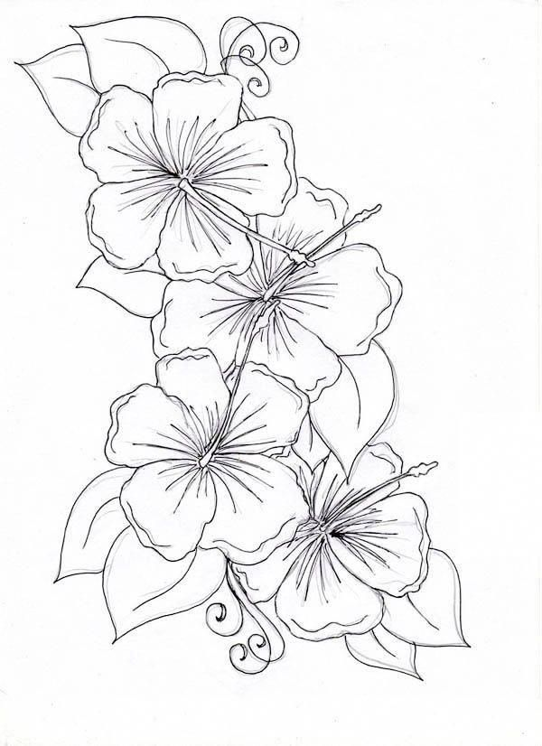 Hawaiian Tattoos With Images Hibiscus Flower Drawing Flower