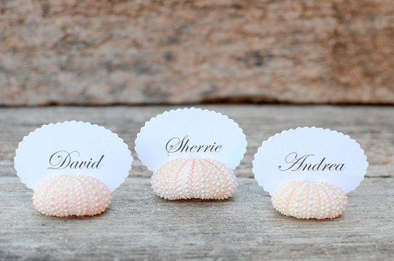 10 détenteurs de la carte oursin Shell Place pour réception de mariage - Natural Pink - plage Table Decor Chic - commentaires Escort Favor océan nautique