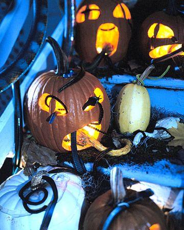 Snake PumpkinsHalloween Decorations, Decorating Ideas, Halloween Pumpkin, Rubber Snakes, Halloween Decor Ideas, Outdoor Halloween, Halloween Ideas, Snakes Pumpkin, Jack O' Lantern