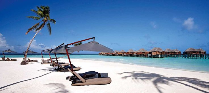 @MaldivesExclusive located in Addu City offers the best #Honeymoon packages in #Maldives. Call us for best offer today. http://www.maldivesexclusive.com/maldives-resorts
