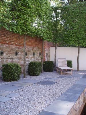 Pleached hornbeam hedge with white wash gravel and lounger