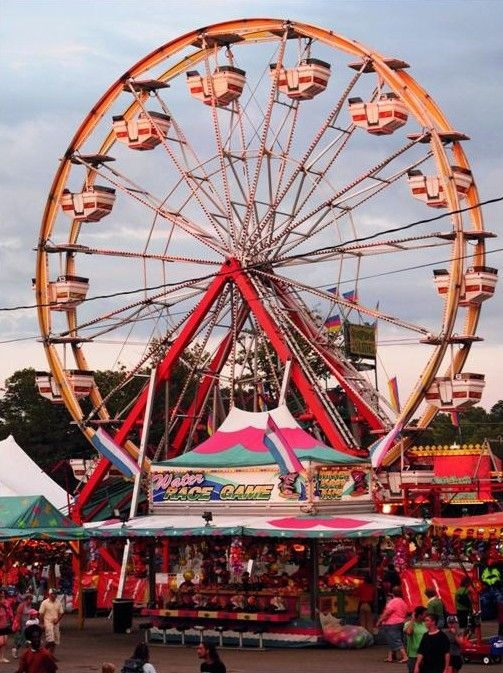 17 Best Images About The County Fair On Pinterest