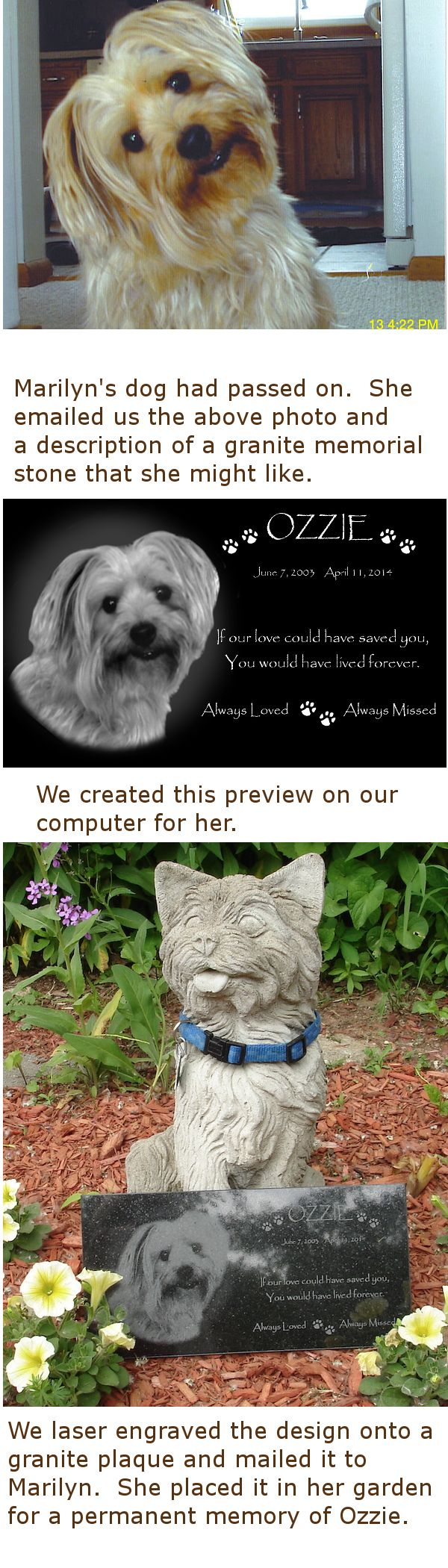 Pet urns memorial ideas pet memorial stones pet memorials pet memorial - Dog Memorial Stone Creation From Photo To Granite Memorial With Photo Laser Etched Into It