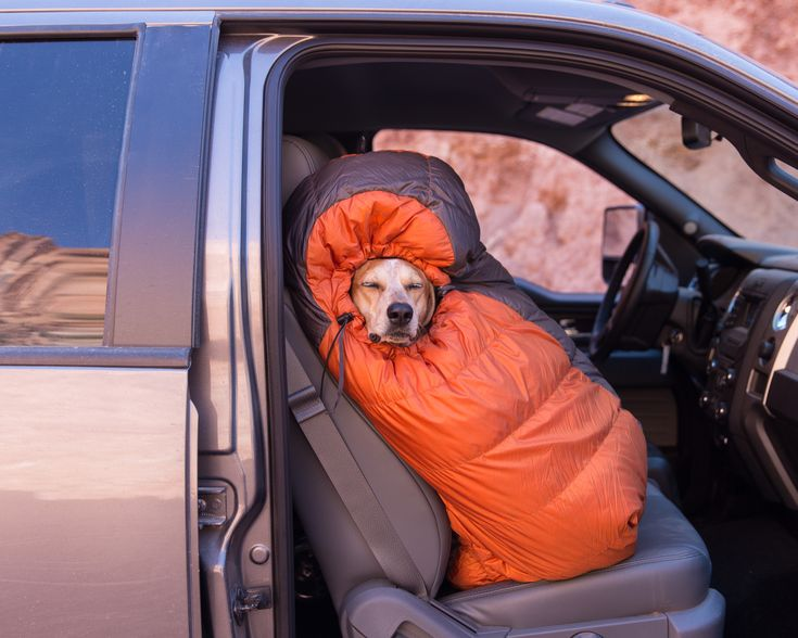 You must become one with your tent http://ift.tt/2gO3Htt