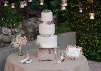 Wedding cake frosting with costco wedding cakes together with redneck wedding cakes as wel as wedding cakes prices with wedding cake cost for all cheap wedding cakes with as wedding shower cakes wooden for mexican wedding cake also wedding cake images as well as white wedding cake recipe