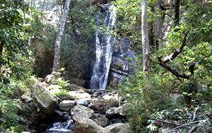 Lekgalameetse Nature Reserve