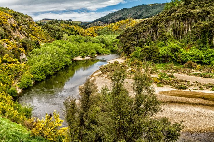 Taieri River Gorge - New Zealand by Barbara Youngleson on ...