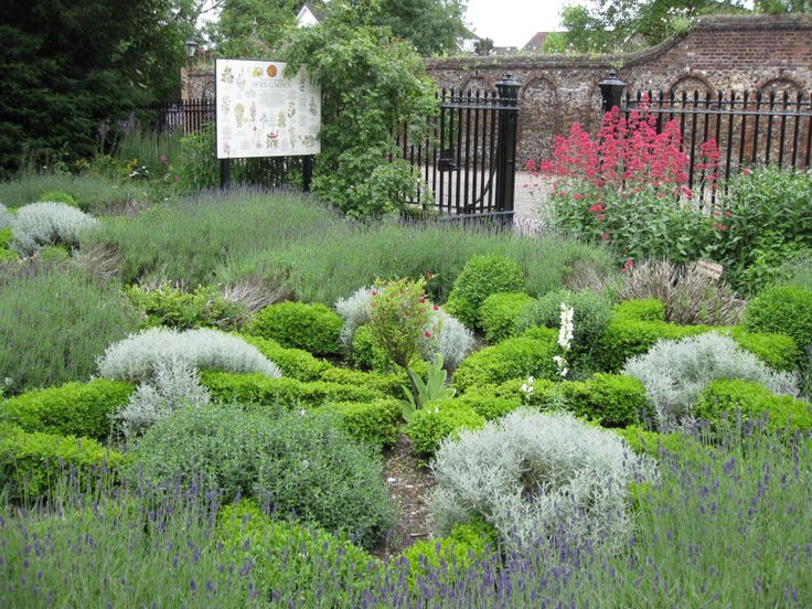 The gorgeous herb garden in the Cathedral Close @Nrw_Cathedral @NorwichCQ