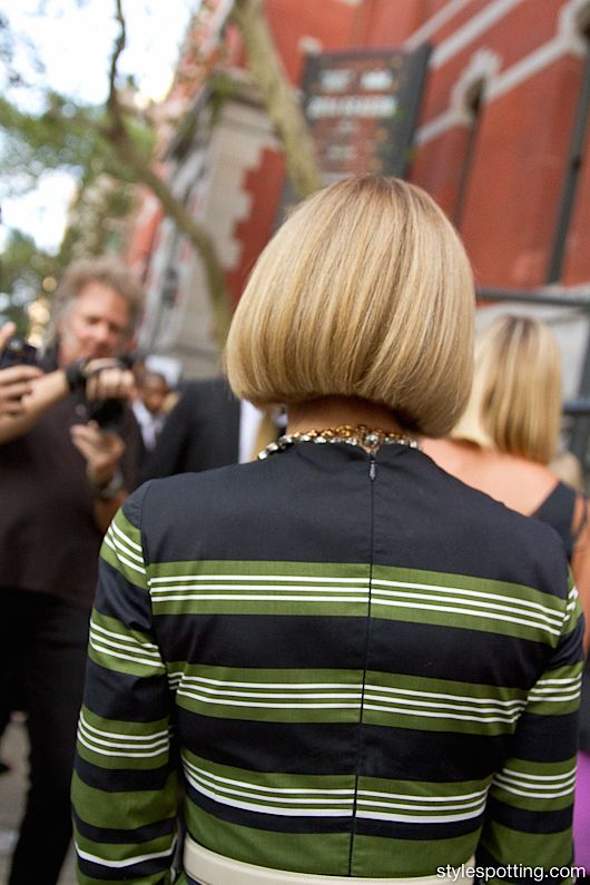 I shot Anna Wintour and was especially smitten with the ...