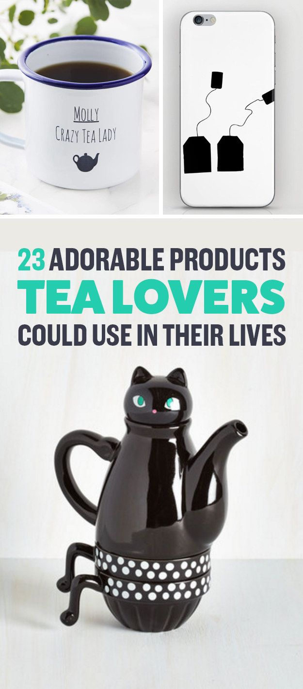 best lifestyle images on pinterest cat stuff cat things and