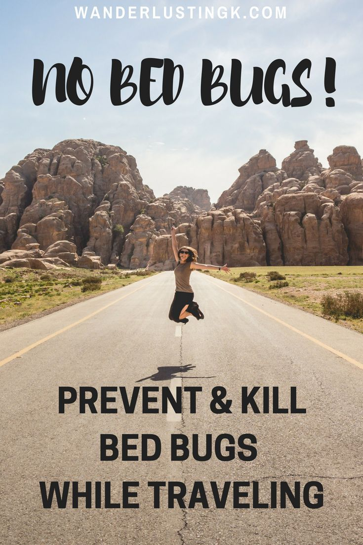 How to prevent & kill bed bugs & sand fleas while