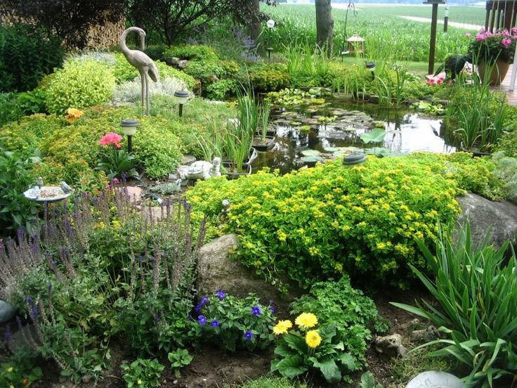 Advice For Starting A Small Garden Pond.