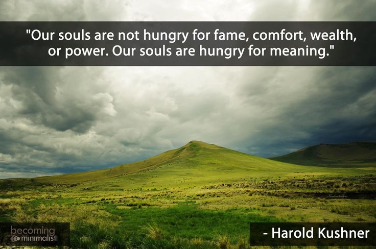 """""""Our souls are hungry for meaning."""" -Harold Kushner"""